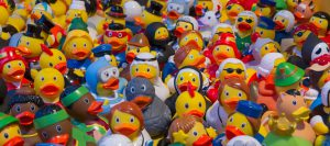 toy-ducks-535335_960_720
